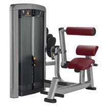 Posilňovanie chrbta Life Fitness Insignia Back Extension