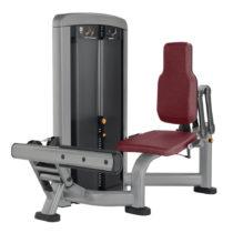 Posilňovač lýtok Life Fitness Insignia Calf Extension