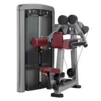 Posilňovač ramien Life Fitness Insignia Lateral Raise