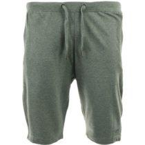 ALPINE PRO PANFIL 2 zelená L - Pánske šortky