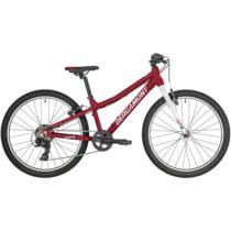 Bergamont REVOX 24 LITE  24 - Detský horský bicykel