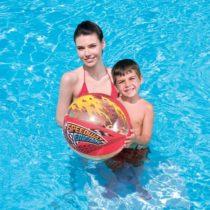 Bestway SPEEDYWAY FRIEND BEACH BALL   - Nafukovacia lopta
