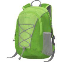 Lewro DINO 12 zelená NS - Viacúčelový detský batoh
