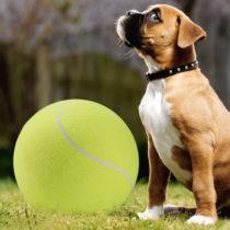Maxi tenisová lopta