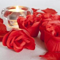 Ruže do kúpeľa