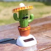 Solárny kaktus