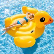 Veľká nafukovacia kačka do bazéna 221 x 221 x 122 cm Intex