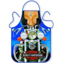 Zástera Harley Davidson